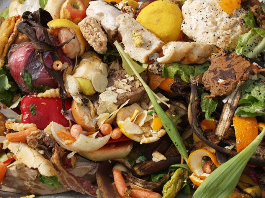 study-finds-30-50-percent-of-worlds-food-is-thrown-away-1-537x402