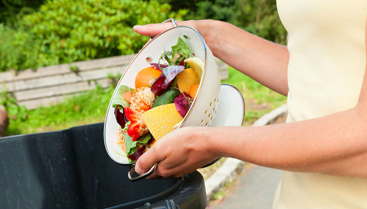 stop-wasting-food-ftr