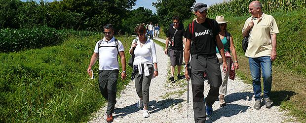 slideshow_walking_oncsr